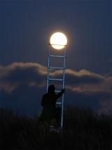 bulan menetas jadi sembilankicauan